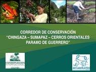 """CORREDOR DE CONSERVACIÓN """"CHINGAZA – SUMAPAZ – CERROS ORIENTALES ..."""