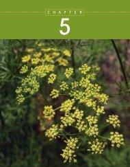 Sample Chapter 5: Evolution and Biodiversity - W.H. Freeman