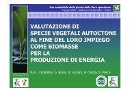 valutazione di specie vegetali autoctone al fine del loro impiego ...