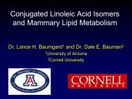 Conjugated Linoleic Acid Isomers and Mammary Lipid Metabolism