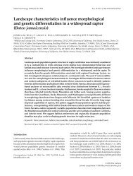 Landscape characteristics influence morphological and genetic ...
