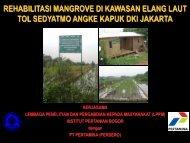 rehabilitasi mangrove di kawasan elang laut tol sedyatmo angke ...