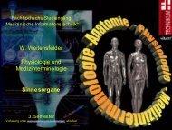 W. Weitensfelder Physiologie und Medizinterminologie Sinnesorgane