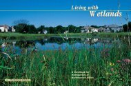Living with Wetlands - Chicago District - U.S. Army