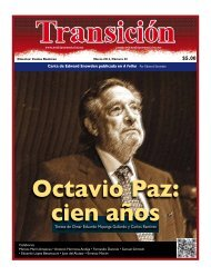 transicion-20