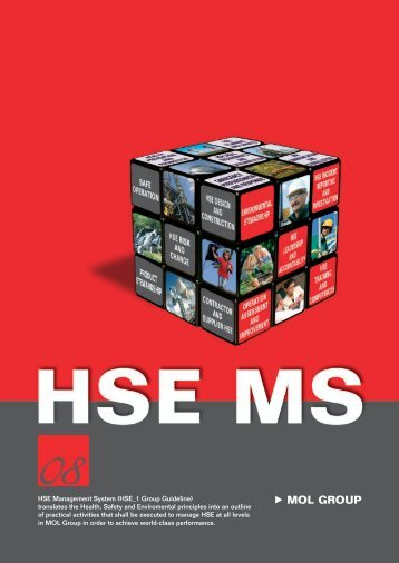 HSE Management System (HSE _1 Group Guideline ... - Mol