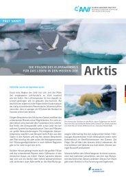 Die Folgen des Klimawandels für das Leben in den Meeren der Arktis
