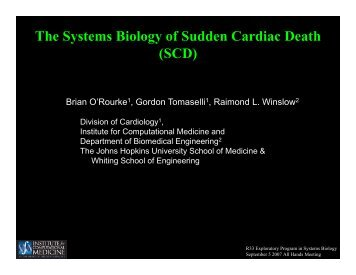 The Systems Biology of Sudden Cardiac Death (SCD) - Institute for ...