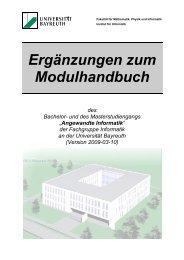 Ergänzungen zum Modulhandbuch - Institut für Informatik ...