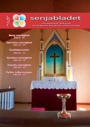 Senjabladet 2011-3 - Mediamannen