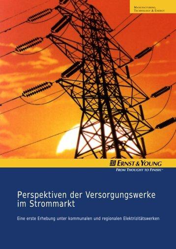 Perspektiven der Versorgungswerke im Strommarkt - Schweiz