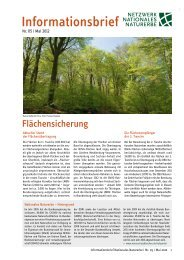 Informationsbrief Nationales Naturerbe 05 / 2012 - Forum Wahner ...