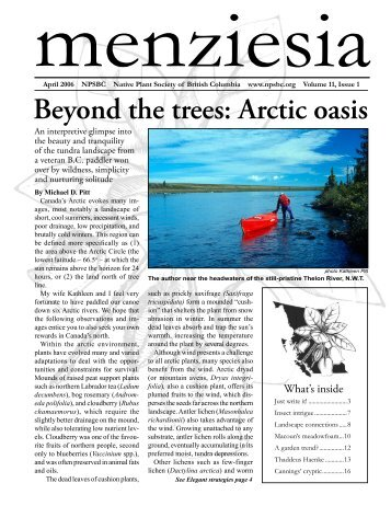 Beyond the trees: Arctic oasis