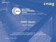 CNAG cluster