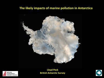 The likely impacts of marine pollution in Antarctica