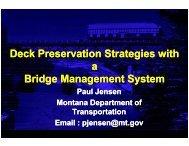 Deck Preservation Strategies with a Bridge Management System ...