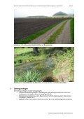 Langwiedhof: Spezielle artenschutzrechtliche Prüfung - VG Mering - Page 4