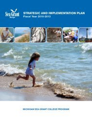 strategic and implementation plan - Michigan Sea Grant - University ...