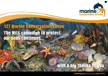 flipbook - Marine Conservation Society