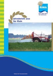 Jahresbericht 2010 Der Rhein 60 - Riwa
