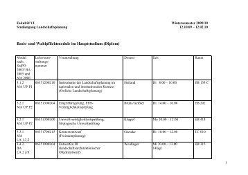 Basis- und Wahlpflichtmodule im Hauptstudium (Diplom)