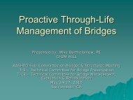 Proactive Through-Life Management Of Bridges - AASHTO ...