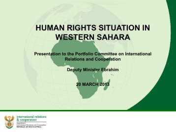 HUMAN RIGHTS SITUATION IN WESTERN SAHARA - SAFPI