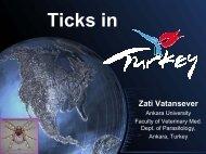 Ticks in Turkey presentation