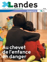Télécharger le document (3.6 Mo) - Conseil général des Landes
