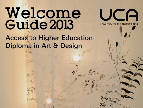 Guide: LASER Access to Higher Education Diploma in Art & Design
