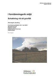 Stiftelsen Kulturmiljövård Rapport 2012:58.