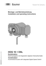 HOG 10 + DSL - euro HÜBNER