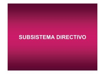SUBSISTEMA DIRECTIVO