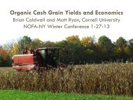 Organic Cash Grain Yields and Economics - Cornell University