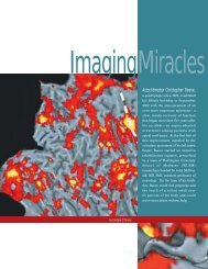 imaging miracles (pdf*) - Mallinckrodt Institute of Radiology