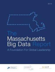 Full Report 2014 Mass Big Data Report_0