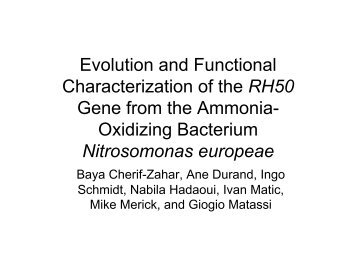 Evolution and Functional Characterization of the ... - Mbio.ncsu.edu