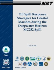 Oil Spill Response Strategies for Coastal Marshes during the ...