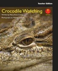 L14 TEpp Crocodile Watching