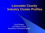 Lancaster County Industry Cluster Profiles - eDisk