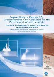 Read the full report (PDF 11 MB) - CO2CRC