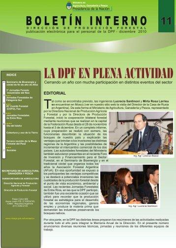 Boletín Nº 11 Diciembre 2010
