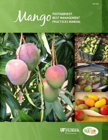 Mango Post-harvest Best Management Practices Manual