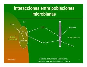 Interacciones entre poblaciones microbianas