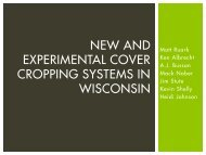 New and Experimental Cover Cropping Systems in ... - Soil Science