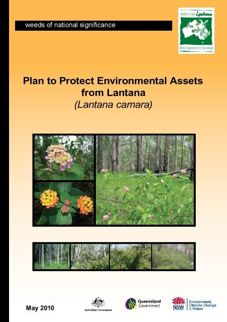 Plan to Protect Environmental Assets from Lantana - Weeds Australia