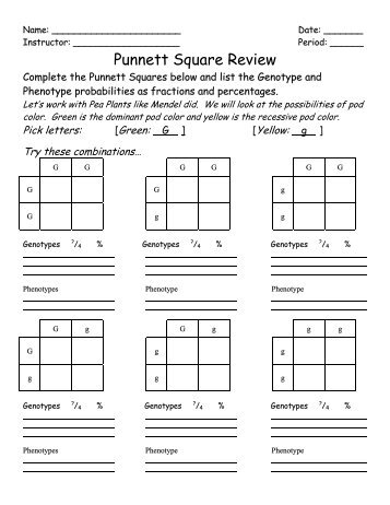 Pictures Ia2 Punnett Square Worksheet Human Characteristics ...