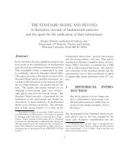 THE STANDARD MODEL AND BEYOND - Physics - Winthrop ...