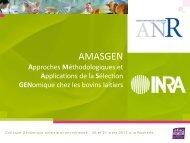 AMASGEN - Inra