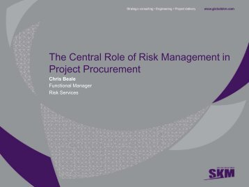 The Central Role of Risk Management in Project Procurement